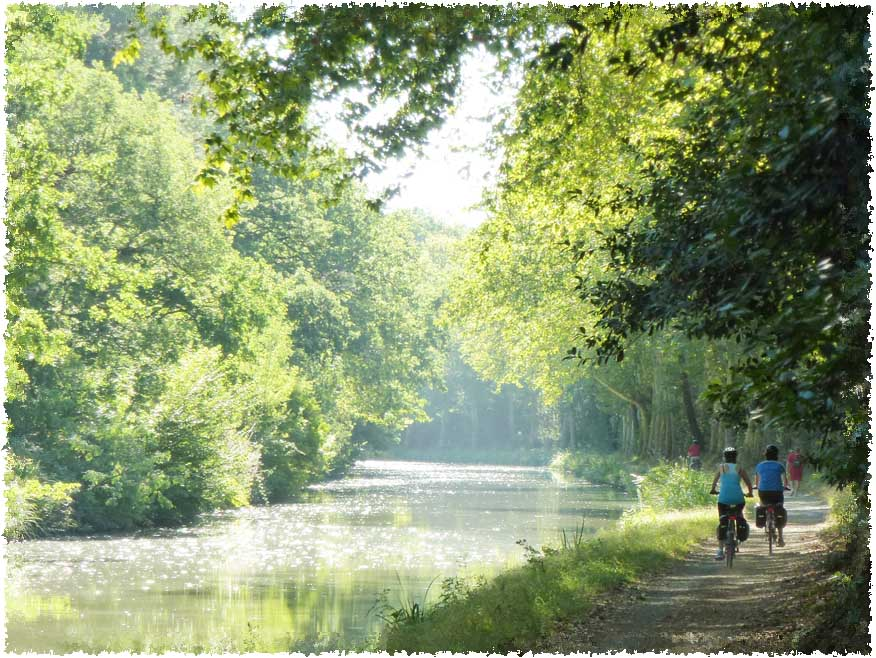 beautiful picture of our rental bikes along canal du midi